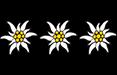 Edelweiß-Klassifizierung: 3 Edelweiß